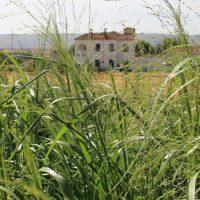 La Comunidad impulsa la producción agrícola con lodos de la depuración de aguas residuales