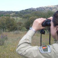 SEO/BirdLife facilita la formación de funcionarios públicos en actuaciones ilegales contra la biodiversidad