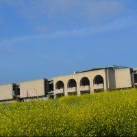 Solicitan al Ayuntamiento de Las Rozas lademolición del edificio 'Kodak'