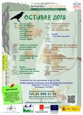 Calendario de actividades para el mes de octubre.
