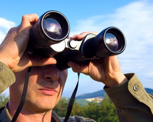 SEO/BirdLife lanza un código ético para la observación de aves.