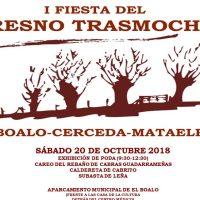 El Boalo celebra su I Fiesta del Trasmocho