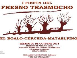 El Boalo celebra su I Fiesta del Trasmocho.