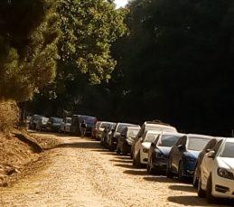 Coches aparcados en un camino de acceso al castañar.