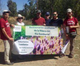 Éxito de participación en los trabajos de reforestación en la vega del Samburiel.