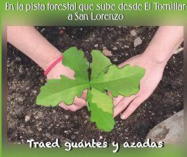 Nueva plantación de especies autóctonas en Abantos.