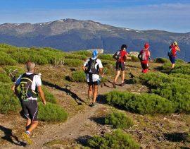 y-asc3ad-hasta-500-participantes-cuerda-larga-parque-nacional-sierra-guadarrama-gran-trail-pec3b1alara-2014-foto-julio-vc3adas-e1531991290160