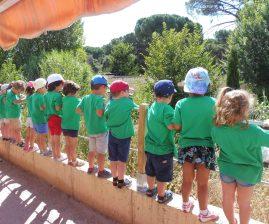 Un grupo de niños observa una de las charcas para anfibios del centro Naturaleza Viva de GREFA. Foto: GREFA.