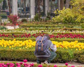 El Real Jardín Botánico sigue la estela de los museos españoles y crece en número de visitantes.