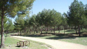 Bosque del Humedal.