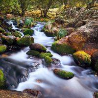 La Comunidad presenta su estrategia contra el cambio climático a través del agua en la COP25