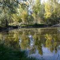 Paseo por la vega del Jarama y las lagunas de Belvis