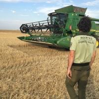 En marcha un operativo para evitar los fuegos causados por las cosechadoras