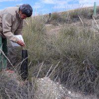 Todos podemos contribuir a evitar la desertificación