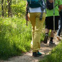 Adesgam presenta la red de caminos de la Sierra de Guadarrama a una delegación polaca