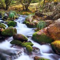 La UNESCO aprueba ampliar la Reserva de la Biosfera de la Cuenca Alta del Manzanares