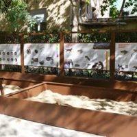 El MNCN presenta un yacimiento educativo que muestra la riqueza paleontológica de Madrid
