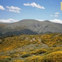 El Parque Nacional de la Sierra de Guadarrama acogerá el III Encuentro Nacional NatureWatch