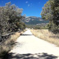 Jornada de voluntariado ambiental en el Parque Nacional