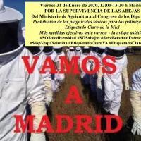 Convocan una manifestación en defensa de las abejas y los polinizadores silvestres