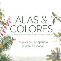 'Alas & Colores', las aves de La Española 'vuelan' a España