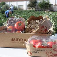 La Comunidad comercializará por primera vez tres variedades de tomate tradicional recuperadas