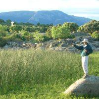 El galápago europeo en la Sierra de Guadarrama