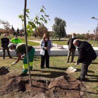 Una década plantando árboles por el párkinson