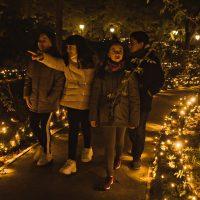 El Real Jardín Botánico celebra la Navidad de su 265º aniversario con una 'Naturaleza Encendida'