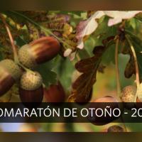 Calienta motores el Biomaratón natural de otoño