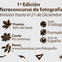 Primera edición del 'Microconcurso de fotografía'