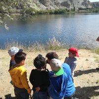 SEO/BirdLife reclama una mayor naturalización de los centros escolares