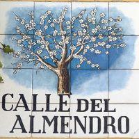 Los almendros en flor, leyendas vivas de Madrid