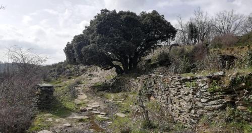 Paisaje serrano. Foto José Ángel Macho Barragués.