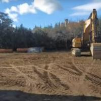 Graves daños en un bosque de fresnos y encinas en El Escorial