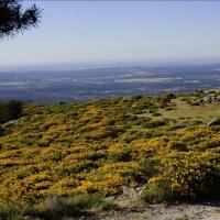 La construcción de una pista forestal amenaza el paisaje serrano