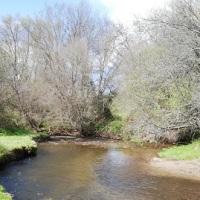 Ruta de los Molinos, el legado del agua en la Sierra del Rincón