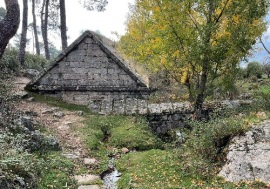 Arca del Helechal 2
