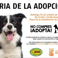 Feria de la Adopción en Algete