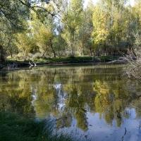 La Comunidad de Madrid continúa con la recuperación de los humedales de la región